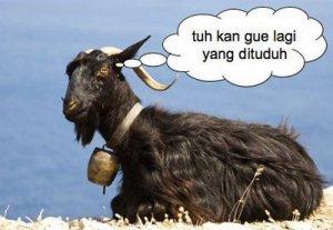 kambing-hitam